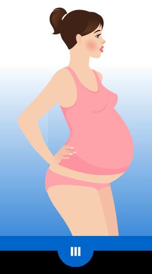 Zdravje žensk – Nosečnost – tretje trimesečje