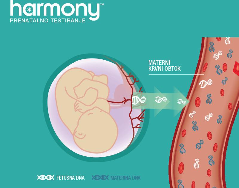 Presejalni krvni testi Harmony lahko prepozna trisomijo 21 (Downov sindrom), trisomijo 18 in trisomijo 13